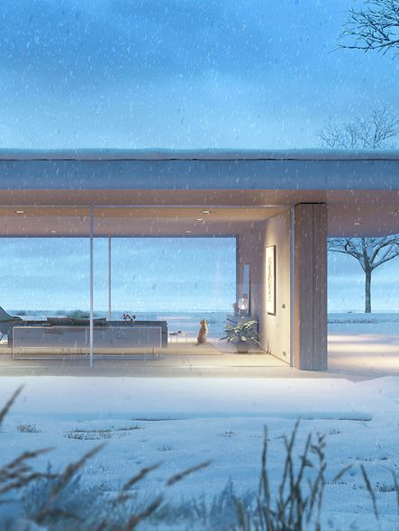 BR_SCH_AS-Winter_exterior_dark_web